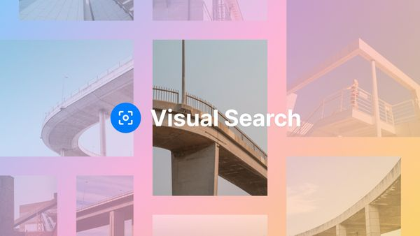 Introducing Visual Search